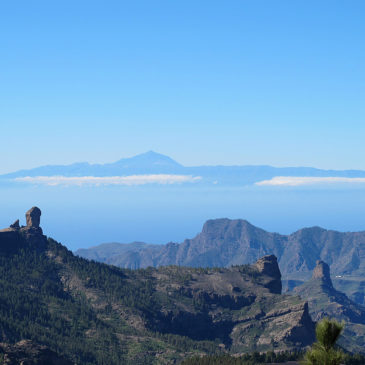 Alles über Gran Canaria